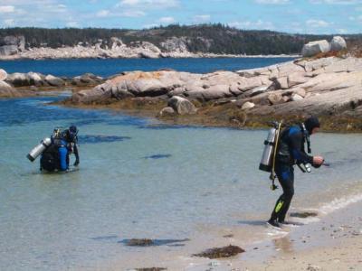 Scuba diving and Snorkelling | Seacoasttrail, Eastern Shore Nova